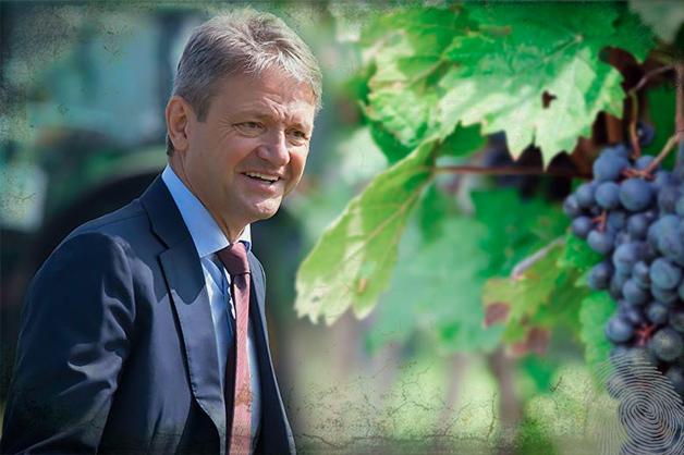 Шато де Ткачев. Как министр сельского хозяйства лоббирует семейный бизнес