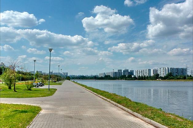 В Москве задержаны черные риелторы, рассовавшие тела своих жертв по пакетам