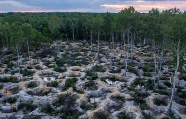 «Это Дикий Запад. Люди сошли с ума». Расследование National Geographic о янтарной лихорадке в Украине