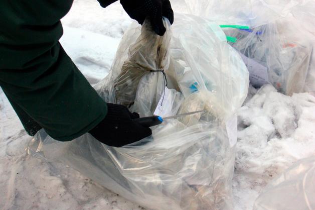 По делу о сбыте наркотиков в Санкт-Петербурге изъяли 10 кг веществ, провели 15 обысков и арестовали 10 человек