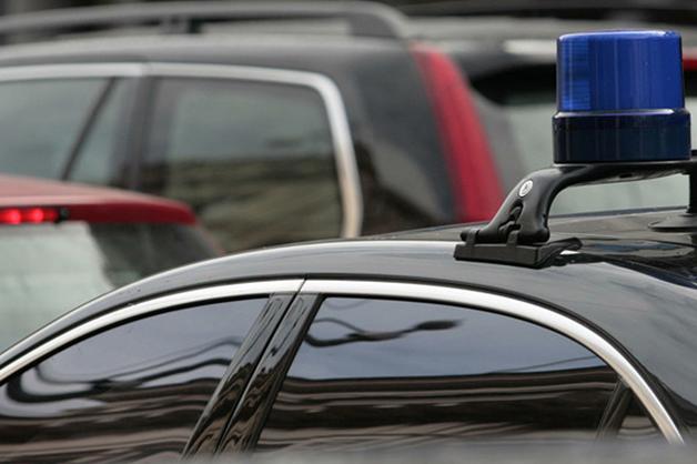 Таможня попросила автомобили с мигалками для охоты за «санкционкой»