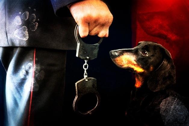 «Твоя шавка меня испачкала!» Хозяйку таксы осудили за то, что собака прикоснулась к брюкам полицейского