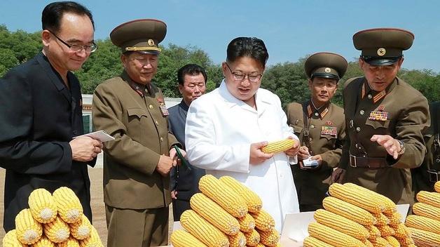 Дикая жизнь в Северной Корее: запрещены даже прокладки для женщин!