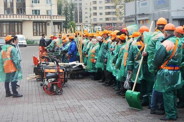 Дело возбуждено по факту трудоустройства фиктивной уборщицы в ГБУ «Жилищник»