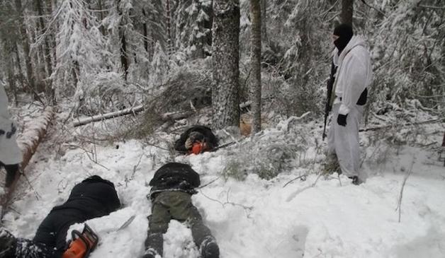 Вооруженные черные лесорубы из Ривненской области перешли границу с Житомирщиной и ступили на тропу войны