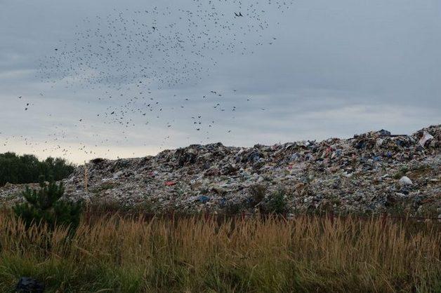 В Коломне арестованы участники акции против мусорного полигона «Воловичи»