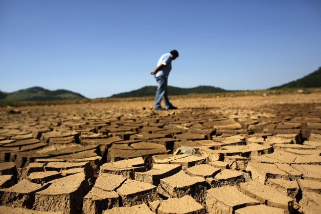 В Крыму серьезные проблемы — может погибнуть весь урожай