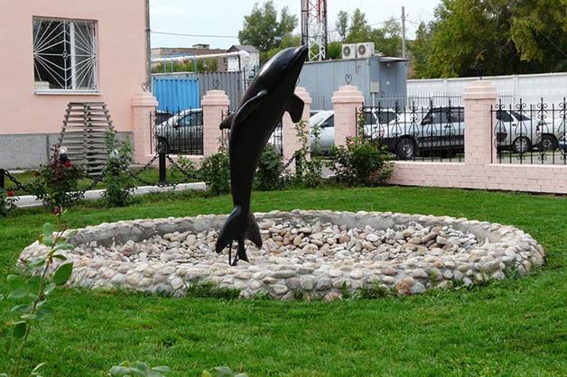 Место откуда не возвращаются — колония Черный дельфин