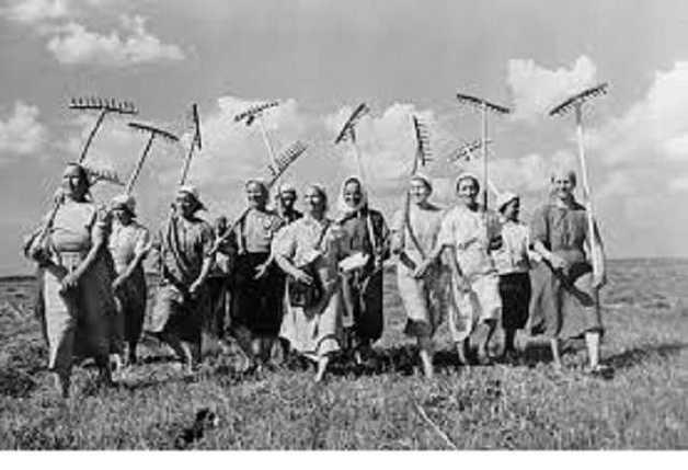 В оккупированном Крыму решили возродить колхозы