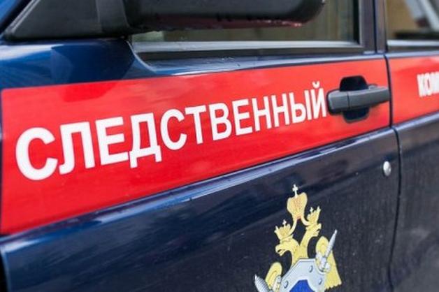 СКР взял под госзащиту девушку-аутистку из Владикавказа, обвиняющую соседей в изнасиловании