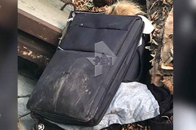 По делу об обнаружении тела девушки в чемодане на юго-востоке Москвы задержали соседа убитой по квартире