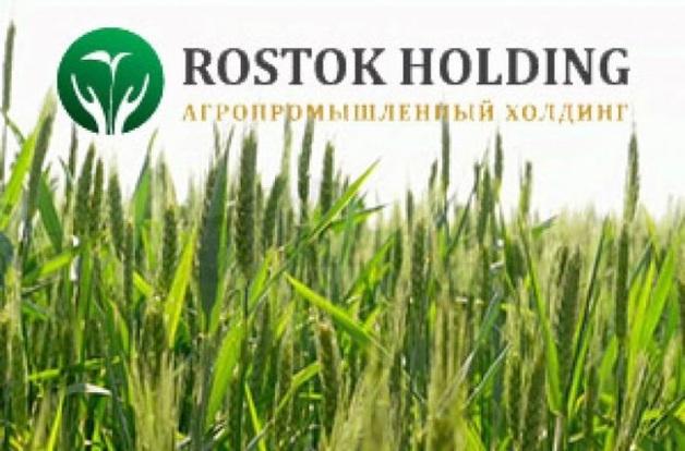 «Росток-Холдинг»: от аферы к банкротству?