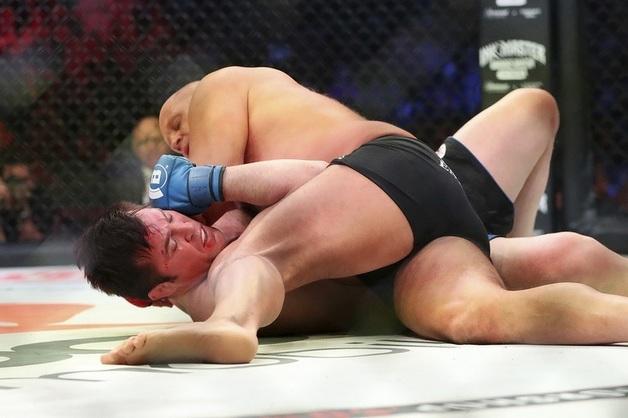 Емельяненко нокаутировал Соннена в первом раунде