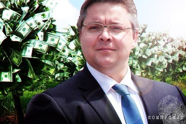 Под крылом стерха. Почему губернатор Владимиров не по зубам даже ФСБ?