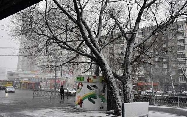 Кувайшев и Высокинский развернули против ларьков спецоперацию