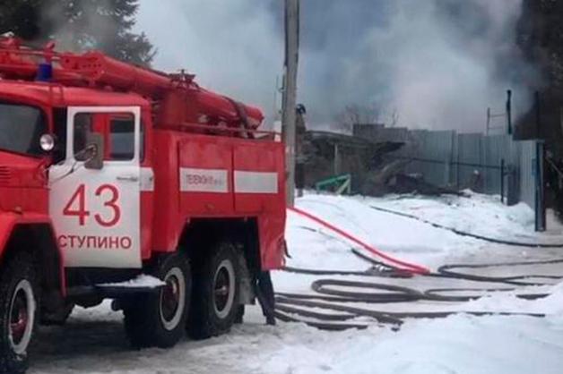 Девушка и животные погибли при пожаре в центре передержки в Подмосковье