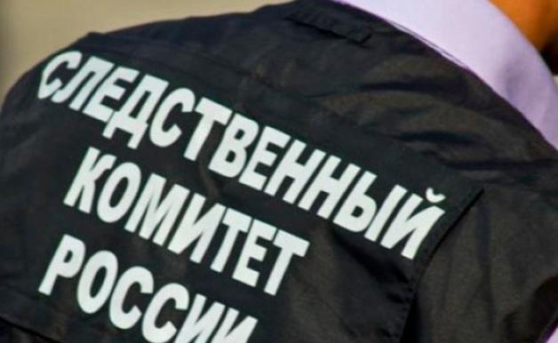 Семью с новорожденным малышом убили в Хабаровске
