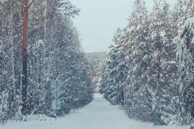 Срочника из Магнитогорска нашли погибшим в лесу около воинской части в Уссурийске