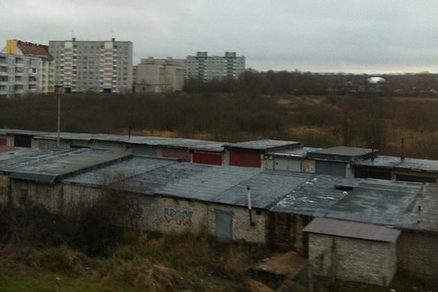 Части человеческого тела нашли у гаражей под Москвой