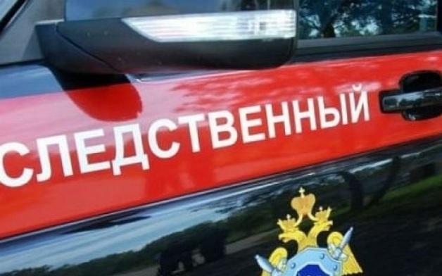 В Москве задержали мужчину при продаже девочки за полмиллиона рублей