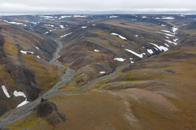 Границы Большого Арктического заповедника изменят для компании Босова