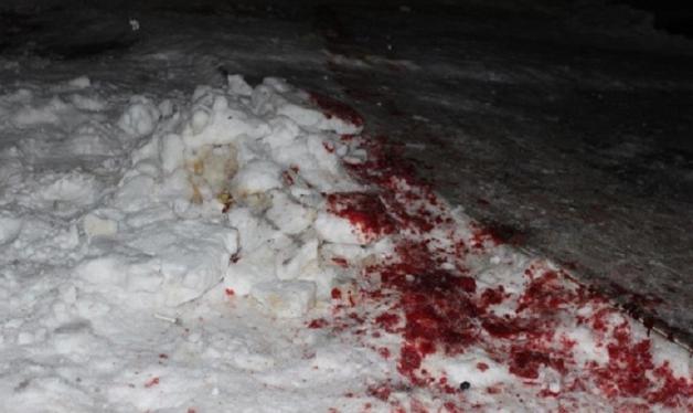 Кровавые разборки в Житомирской области: много раненых и убитый
