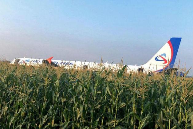 Пиарщики назвали аварию A321 «подарком» для репутации «Уральских авиалиний»