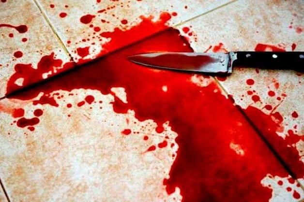 Девятилетняя девочка случайно убила брата