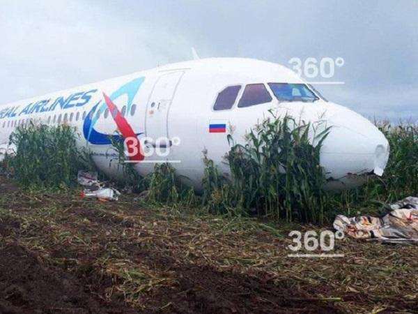 В России начали разбирать самолет, аварийно севший на кукурузное поле: фото шокируют
