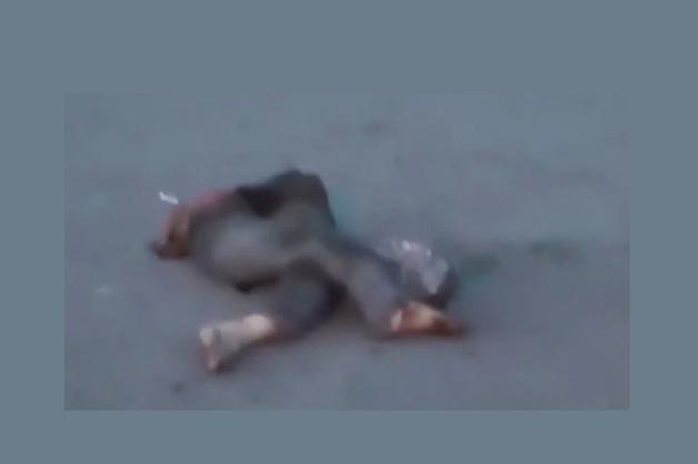 Разрубило на две части: в Сети появились кадры смертельного ДТП в Бийске