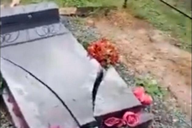 В Сибири семиклассник разгромил более 40 надгробий