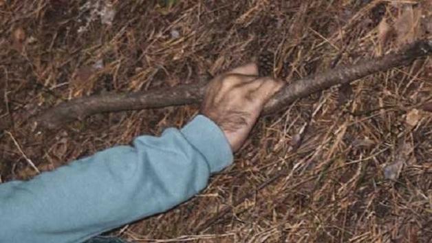 В Киеве в лесу нашли труп мужчины с палкой в руке
