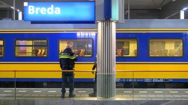 В Нидерландах 15-летние подростки обстреляли два поезда