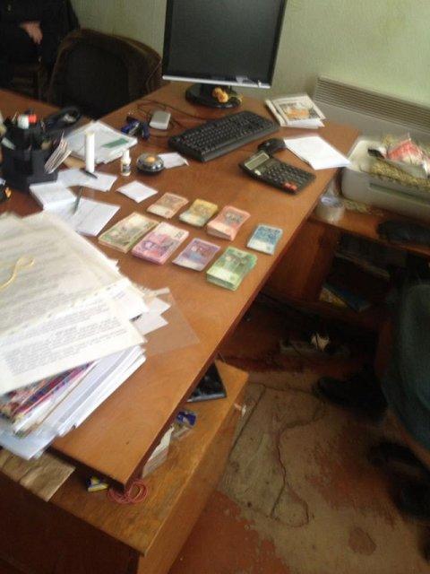 Агропредприятие Донецкой области уклонилось от уплаты 6,2 миллионов гривен налогов — фото 35186